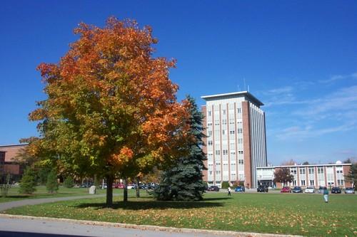 纽约州立大学宾汉姆顿大学Binghamton University SUNY